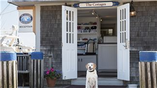 Cottages, Reception with Mascot Bailey