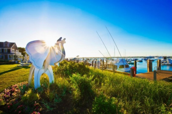 white elephant nantucket ma