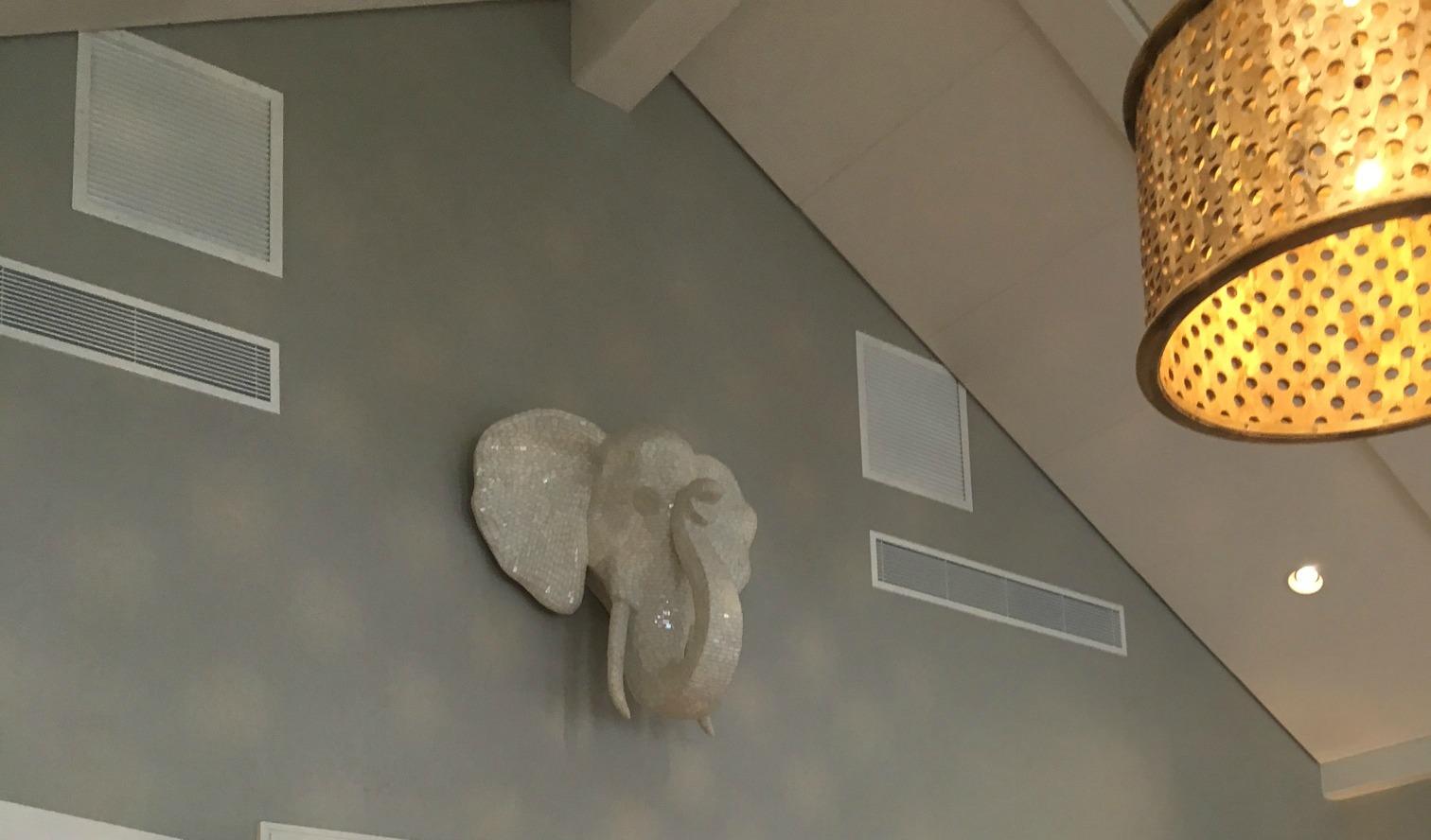 elephanthead1