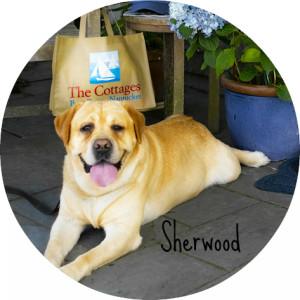 Sherwood Round Name