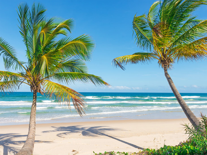 Things to do in Palm Beach, Florida