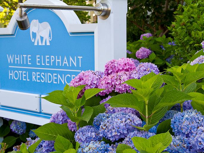 Gallery of White Elephant Residences & Inn, Nantucket