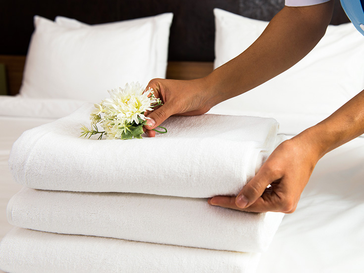 Sustainable Housekeeping